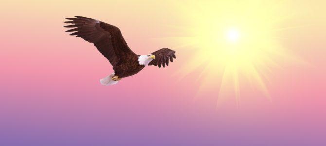 Medytacja na wieczór – szybuj z orłami…