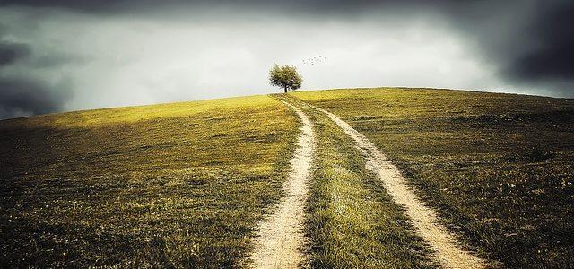 Bez ziemi, bez wiary,bez nadziei- nie byłoby życia- nie było by mnie ani Ciebie…Dla tego ciesz się tym co masz i bądź wdzięczny.