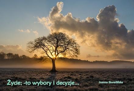 Życie jest drogą ciągłego wybaczania i twoich wyborów