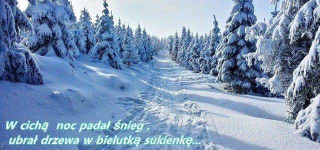 W cichą noc padał śnieg , ubrał drzewa w bielutką sukienkę…nucąc cicho kolędę