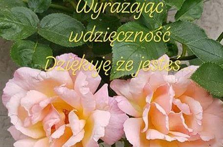 uśmiech jest kwiatem – przebaczenie lekarstwem