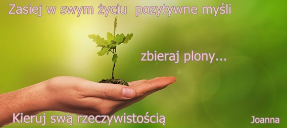 Zasiej W Swym życiu Pozytywne Myśli I Zbieraj Plony
